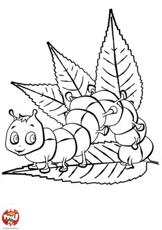 Coloriage: Chenille dans les feuilles