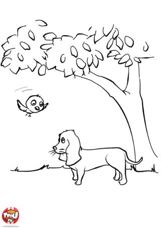 Coloriage: Chien et oiseau sous un arbre