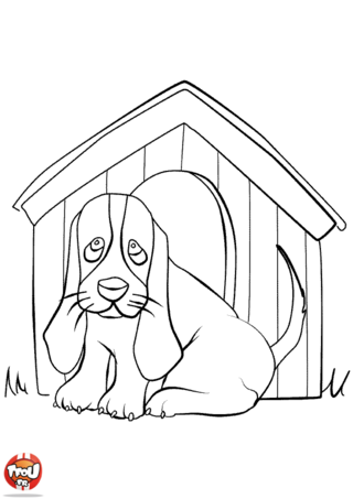 Pin cochon ski coloriage sur animaux org on pinterest - Coloriage niche ...