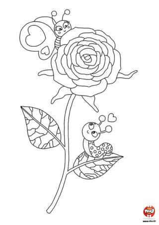 Perchés sur une rose, les escargots sont tout timides pour se dire qu'ils sont amoureux. Si toi aussi, tu es timide, imprime ce coloriage pour faire passer ton message pour la Saint Valentin.