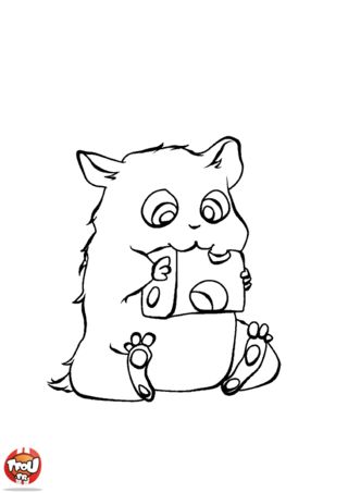 Coloriage: Hamster et fromage