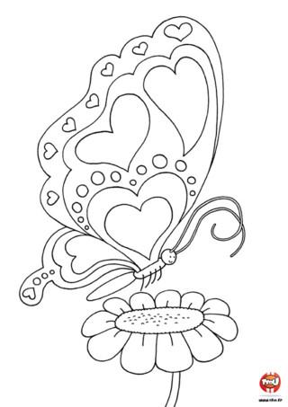 Tu adores les papillons ? Alors tu vas adorer ce papillon coeur qui butine sur la fleur ! Il sera encore plus beau avec les couleurs que tu lui donneras ! Offre ce coloriage pour la Saint Valentin.