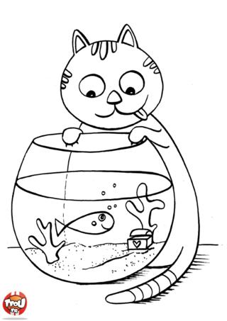 Coloriage: Chat guette le poisson