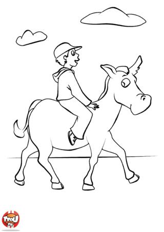 Coloriage: Equitation