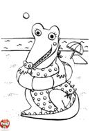 Crocodile à la plage