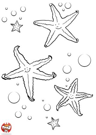 Coloriage : Trois étoiles de mer