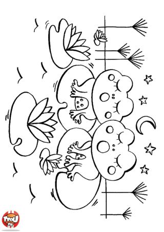Coloriage: Couple de grenouilles