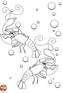 Les deux homards