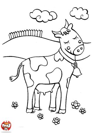 Coloriage: Vache dans le pré