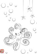 Bébé pieuvre