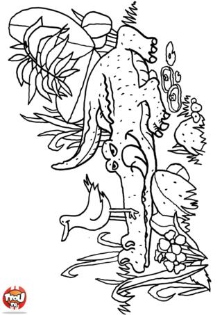 Coloriage: Crocodile et oiseau