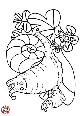 Coloriage: Escargot et bébé