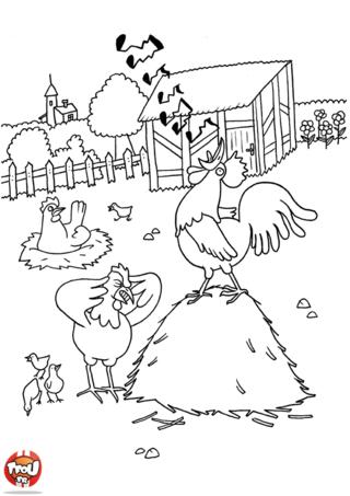 Coloriage: Coq qui chante