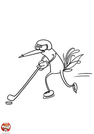 Coloriage: Oiseau hockeyeur