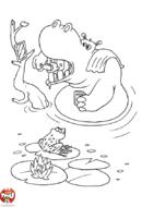 Hippopotame qui se lave les dents