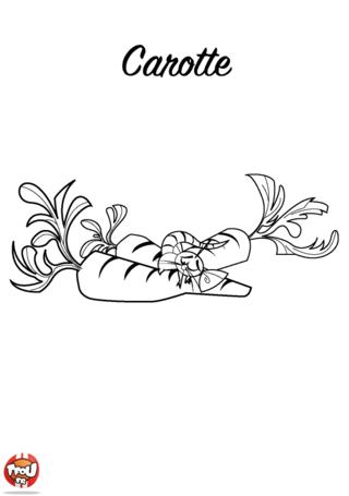 Coloriage: Carotte