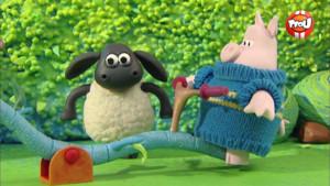 "Le jeu du ""soulève cochon"" avec Timmy"