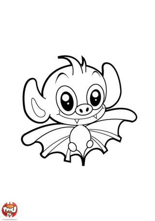 Coloriage: Chauve-souris aux grandes oreilles