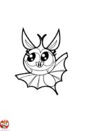 Chauve-souris aux grand yeux