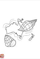 Continent d'Océanie