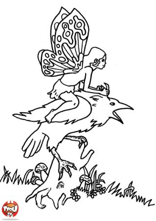 Coloriage: Fée sur son oiseau