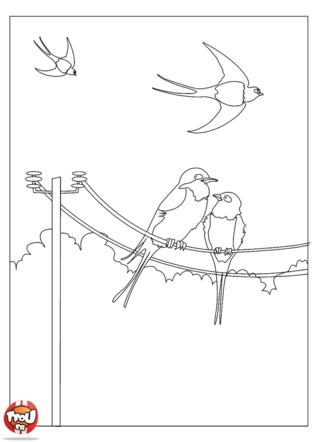 Coloriage: Avec l'arrivée du printemps, tu dois surement entendre les oiseaux chanter le matin ! Imprime vite ce beau coloriage du printemps pour le colorier avec les couleurs de ton choix