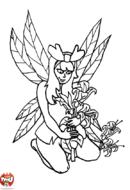 Fée cueille des fleurs