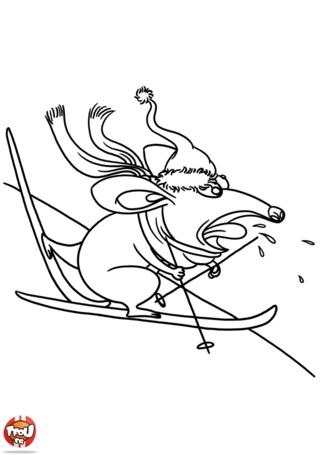 La souris est aussi parti faire du ski. Elle adore dévaler les pistes et glisser le plus vite possible. Imprime vite le coloriage de la souris skieuse sur TFou.fr.