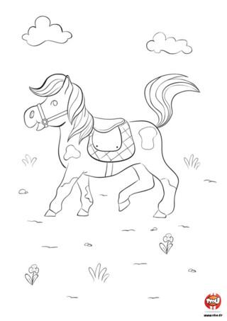 Huuuuu-Huuuuuu fait le poney en se baladant dans la nature. Le ciel est beau et ensoleillé aujourd'hui dans la ville de Jo le poney. Il a décidé de faire une petite promenade pour se dégourdir les jambes. Sa crinière et sa queue volent au vent tandis qu'il rêve de ce qu'il fera quand il sera un grand cheval vigoureux : du rodéo ? des compétitions ? Tfou.fr te propose d'imprimer ce super coloriage de poney pour enfant.