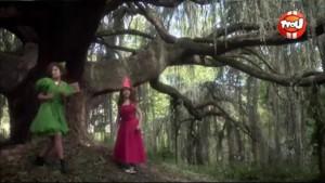 Les sorcières - Les fées Cloches