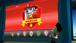 INTRO MARCUS - paw patrol