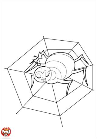 Coloriage: Araignée et sa toile