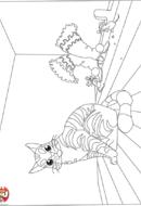Chat botté sans ses bottes