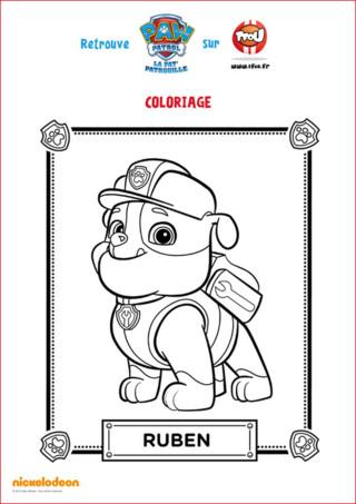 Imprime ce coloriage de Ruben l'adorable bouledog anglais de la Pat'Patrouille. Sa couleur préférée est le jaune et il roule à bord d'un camion de construction.