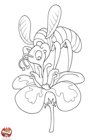 Coloriage: L'abeille butine