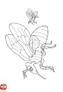 Deux abeilles en vol