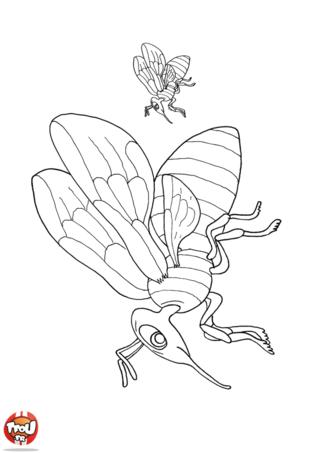 Coloriage: Deux abeilles en vol