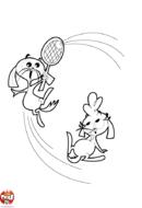 Les lapins au tennis