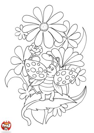Coloriage: Coccinelle perchée dans les fleurs