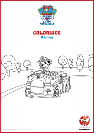Prêt pour une activité coloriage? Tu découvriras Marcus et son super véhicule sur le dessin. Le sais-tu? En imprimant gratuitement ce coloriage de ton héros TFou tu pourras gagner plein de Tfizz ainsi qu'un badge Paw Patrol!
