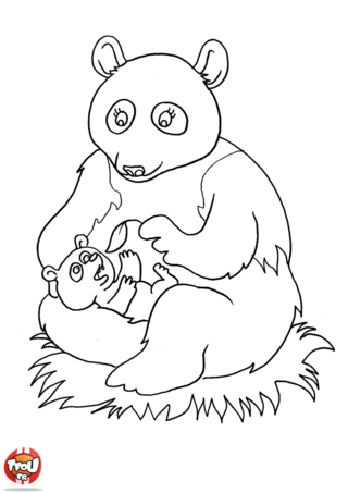 Coloriage: Petit panda et maman panda