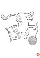 Le chat et la pelotte de laine