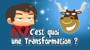 Visuel - Explications Transformations