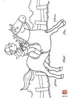 Cheval d'équitation