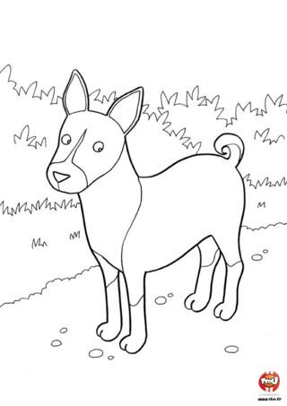 Coloriage : Le beau chien. Tu adores les chiens ? Imprime vite ce coloriage d'un beau chien. Tu peux le colorier avec toutes les couleurs que tu veux et l'imprimer autant de fois que tu veux.