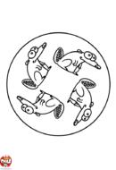 Mandala castor