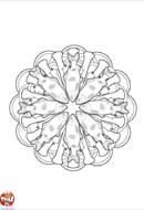 Mandala truite