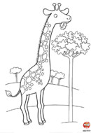 La girafe mange