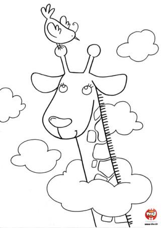 Coloriage : Une girafe dans les nuages. La girafe au long cou à la tête dans les nuages. Imprime vite ce joli coloriage gratuitement sur TFou.fr