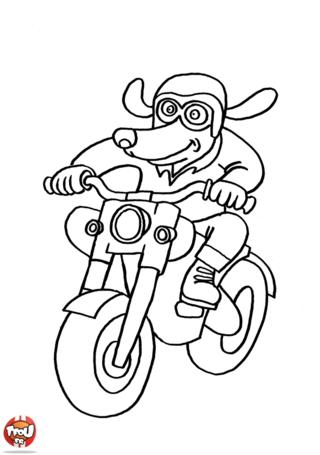 Coloriage: Sur sa moto